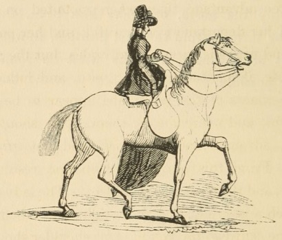 Mounted Lady in Sidesaddle